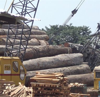 large logs stacked upon each other with a crane infront of them to represent Direct Timber's sourced hardwood.