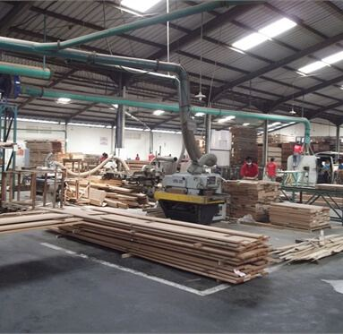 timber stacked upon each other and being prepared within a processing plant.